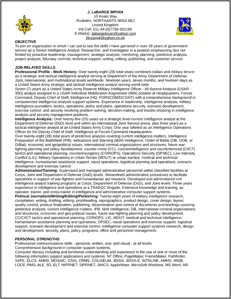 Business Intelligence Analyst Resume Template