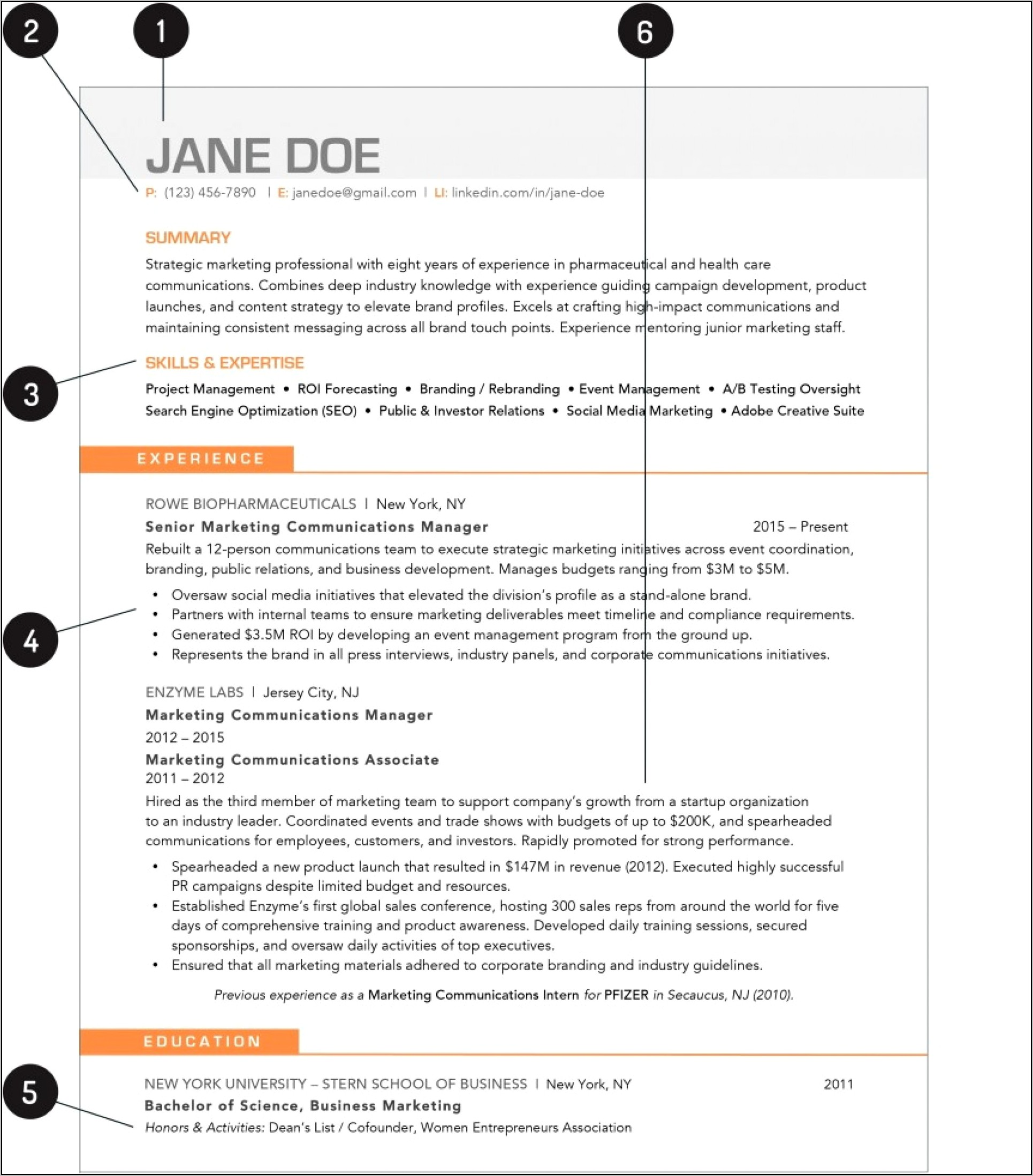Download Free Resume Templates Wordpad