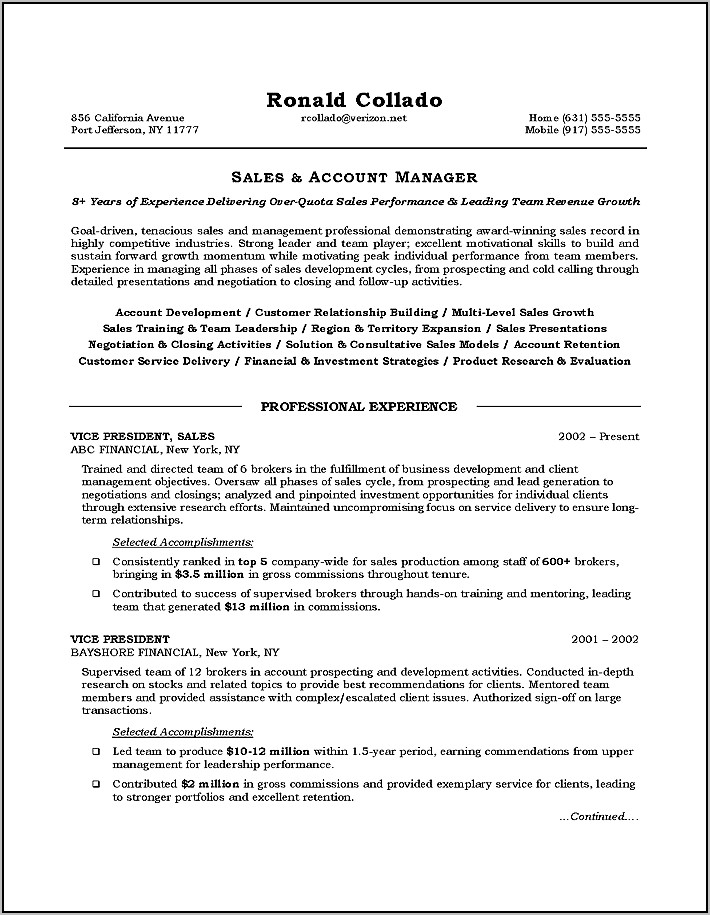 Resume For Sales Manager Position