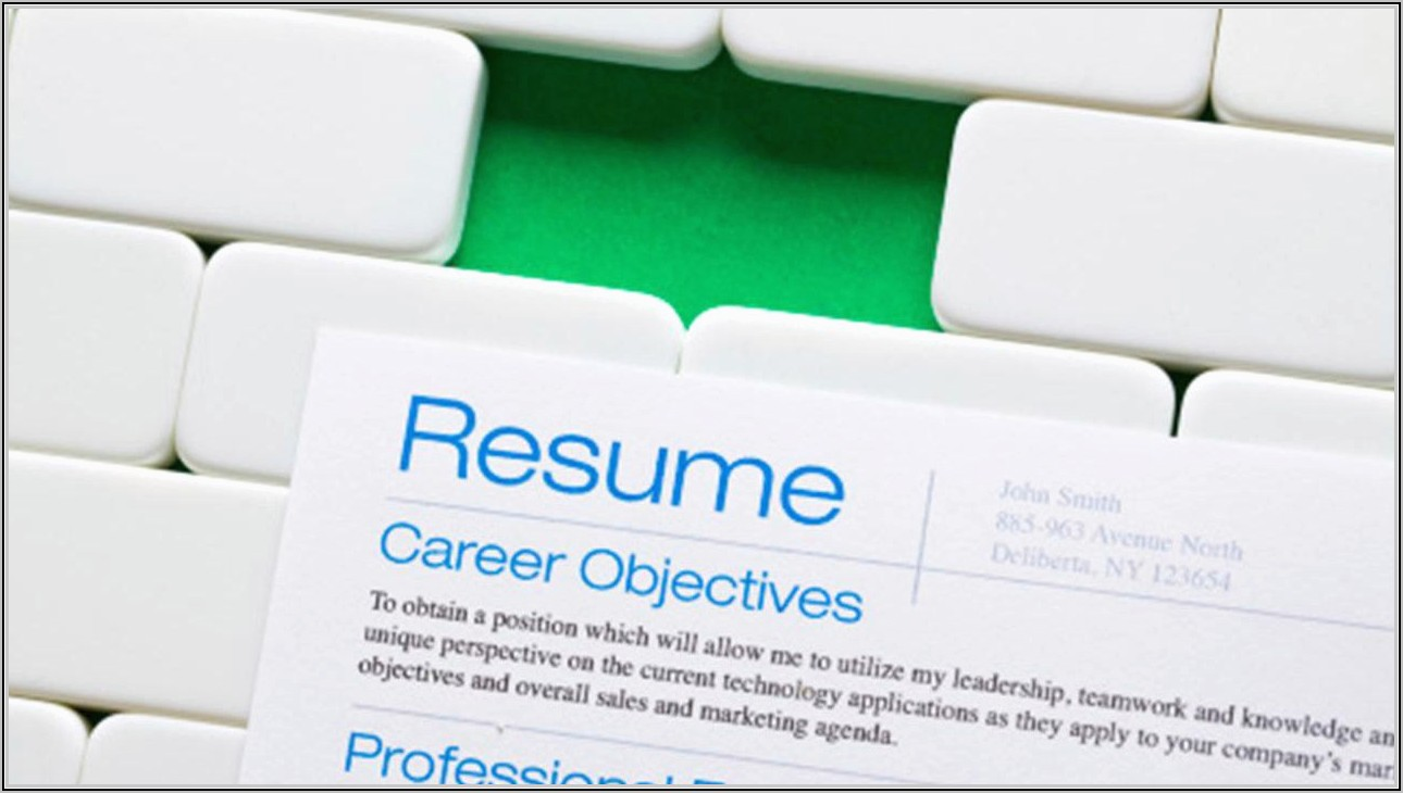Resume Format For Sales Executive In India