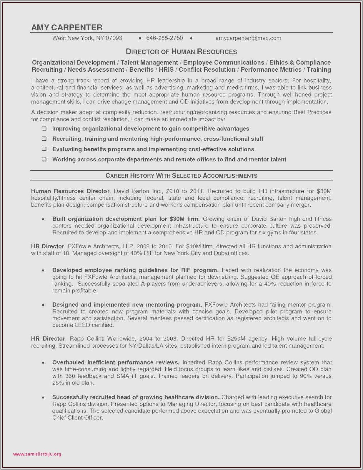 Resume Format For Sales Executives