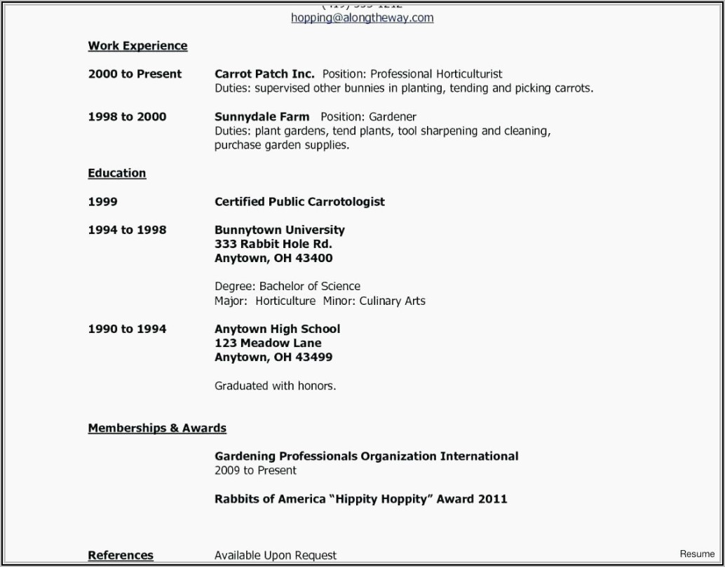 Resume Template For Apple Pages