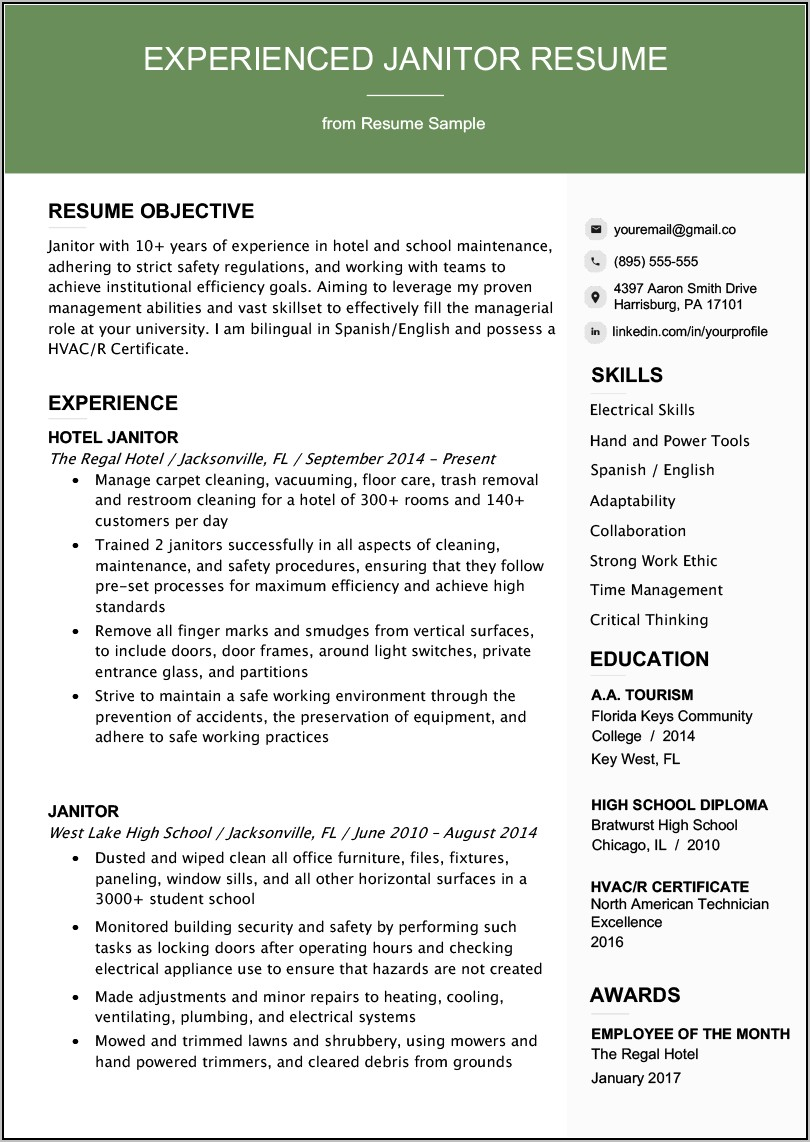 Sample Professional Resume Writing