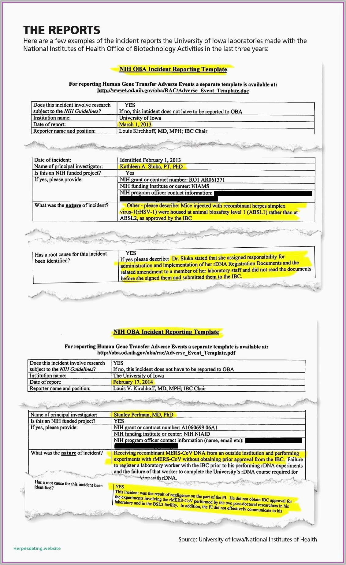 Expense Report Template Free Pdf
