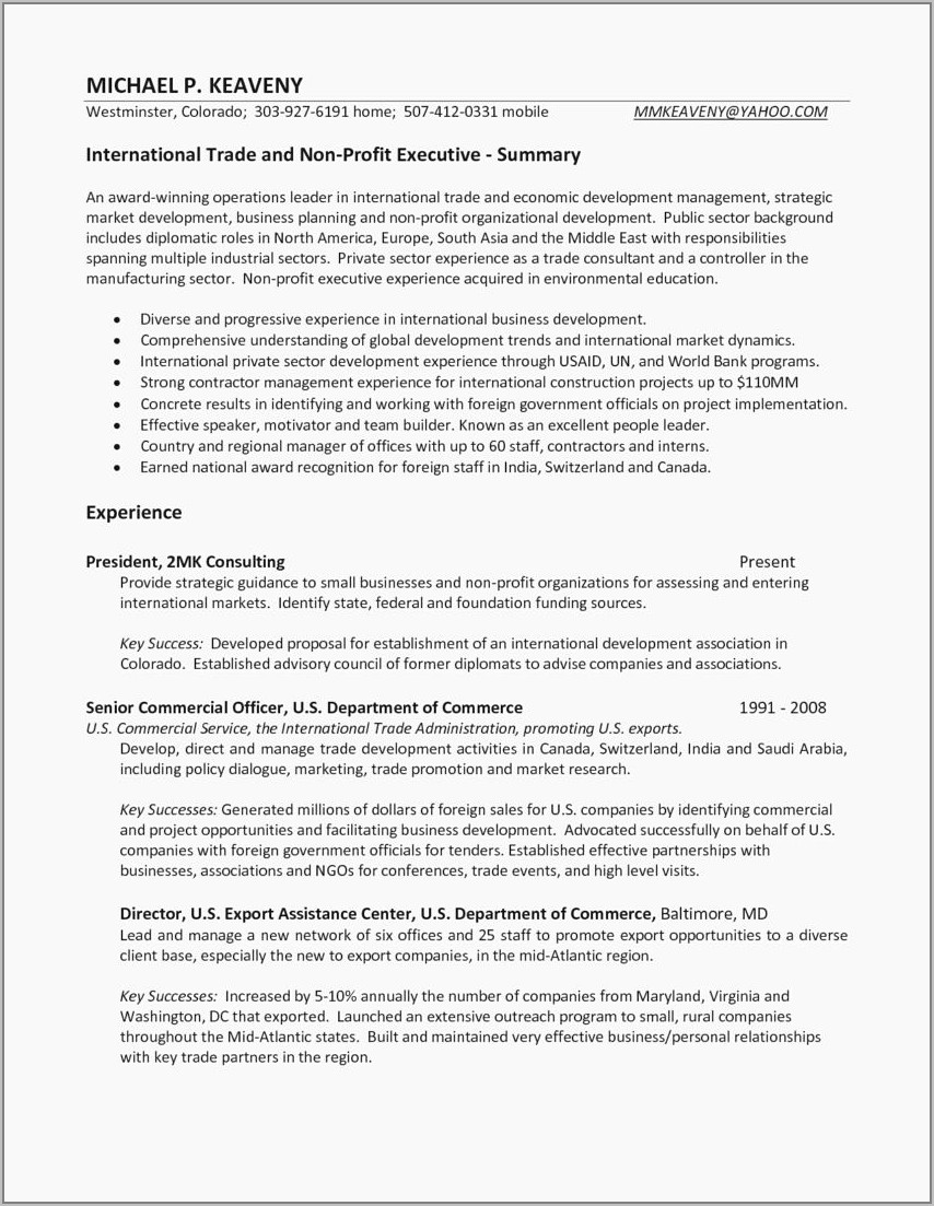 Free Resume Template For Sales Executive