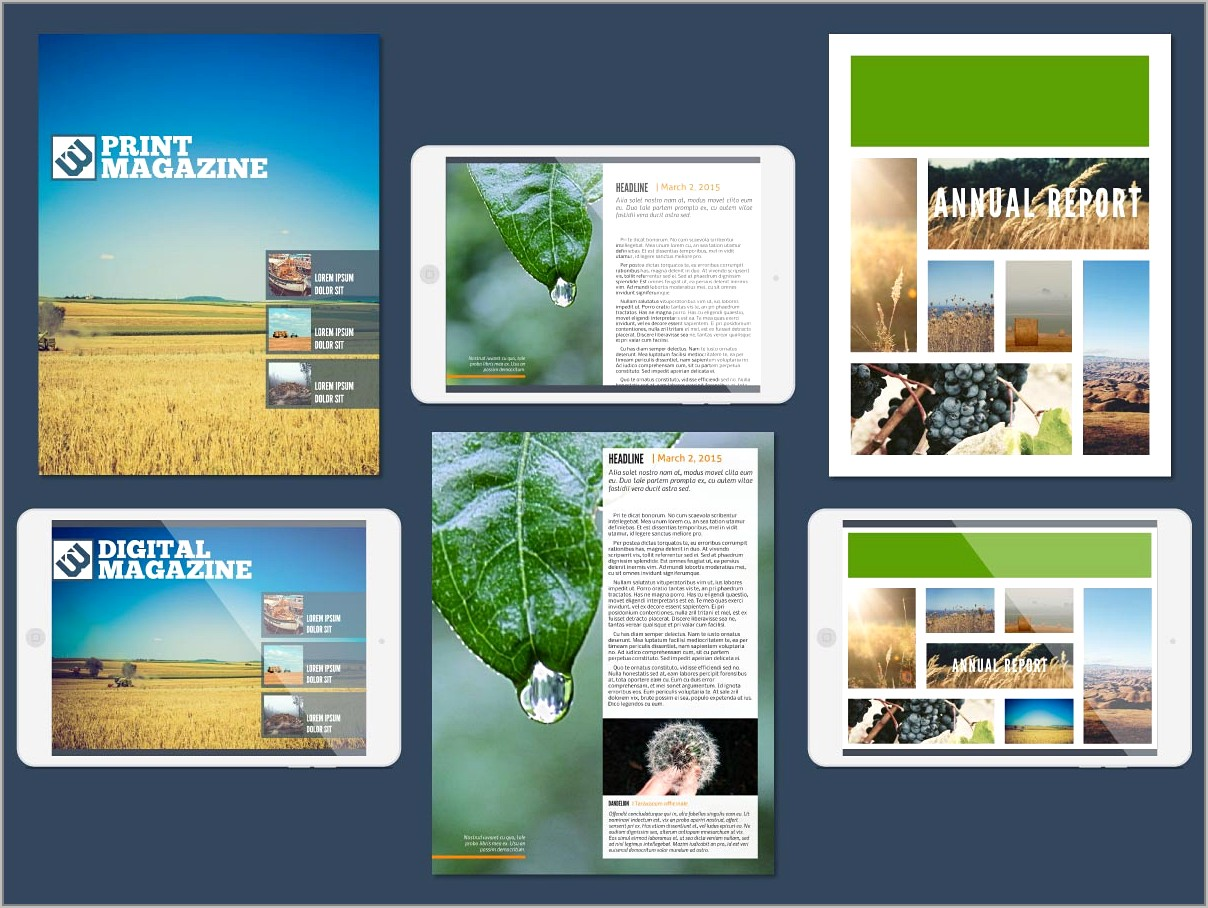 Microsoft Online Templates For Brochures