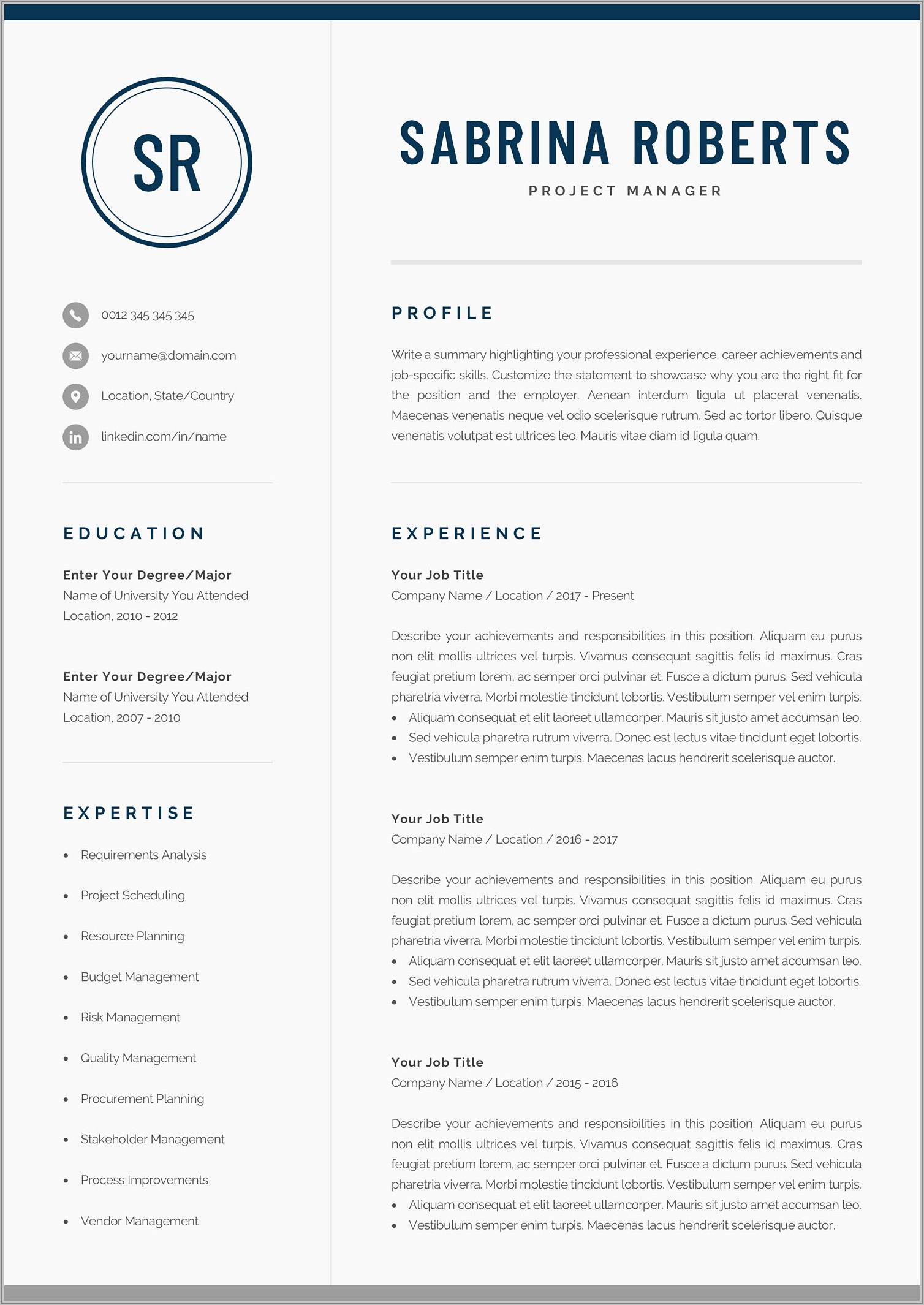 Professional Resume Template Word 2013