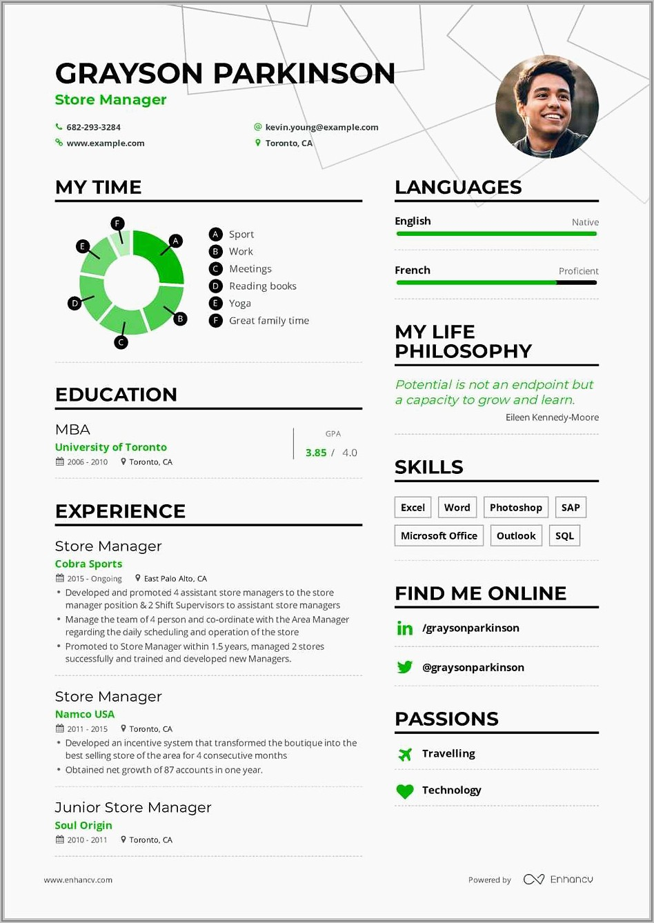 Resume Summary Example For Project Manager