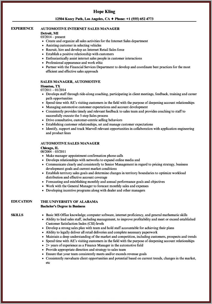 Sales Manager Cv In Word Format