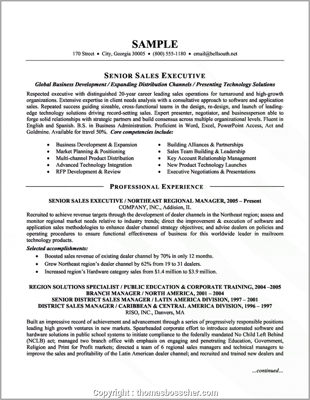 Sales Manager Resume Format India