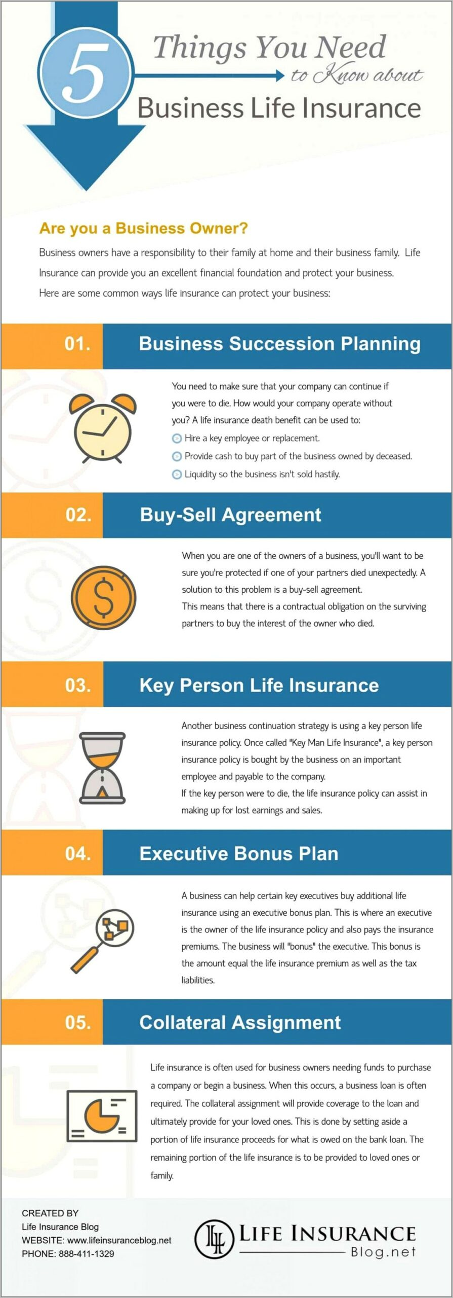 Succession Plan Template For Nonprofits