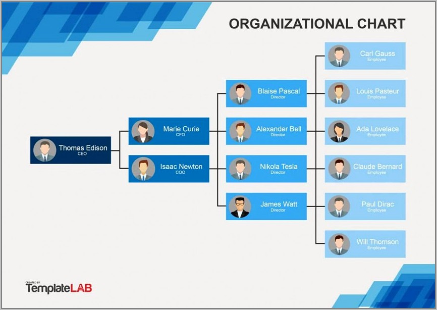 Template For Organization Chart In Word