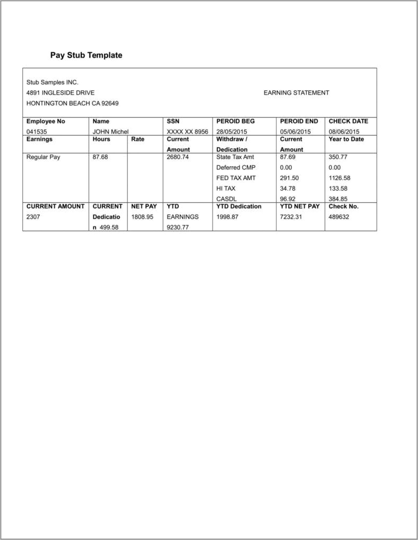 Template For Pay Stub Microsoft Word