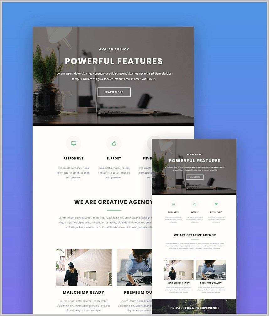 Templates For Mailchimp Free