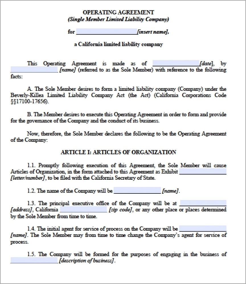 First Amendment To Operating Agreement Form