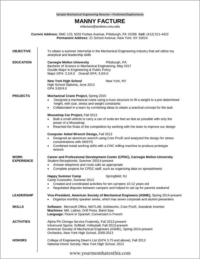Fresher Resume Templates Free Download