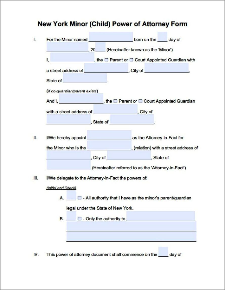 Limited Power Of Attorney Form New York