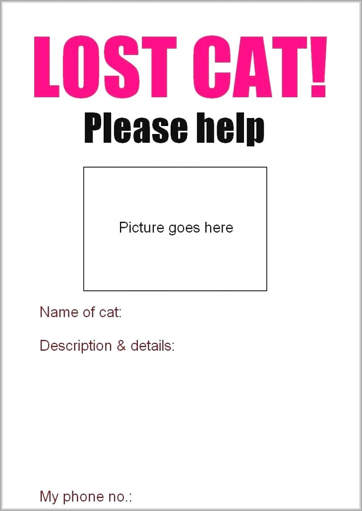 Lost Cat Flyer Template Free