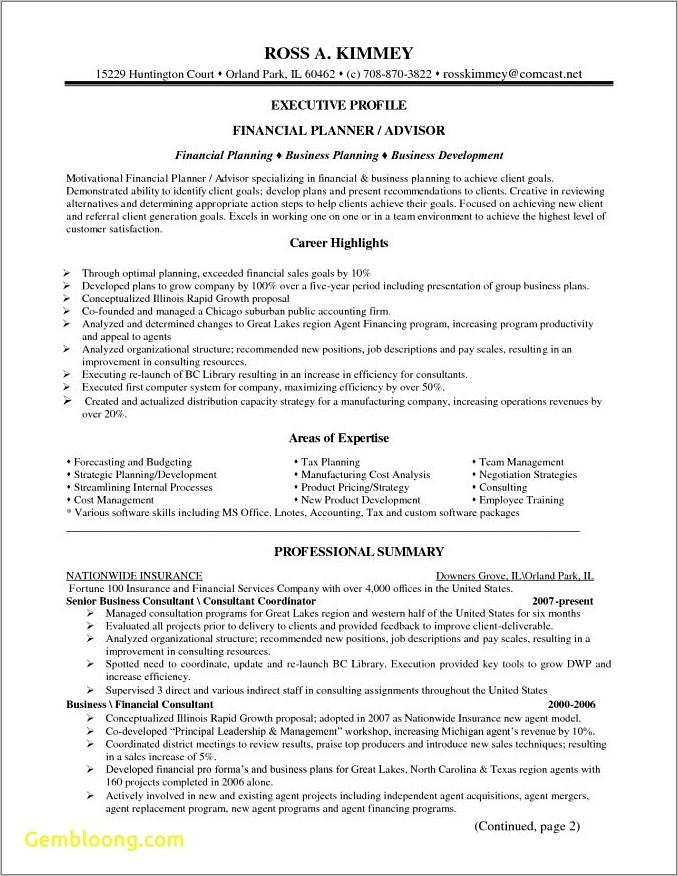 Merrill Lynch Pmd Preliminary Business Plan Template