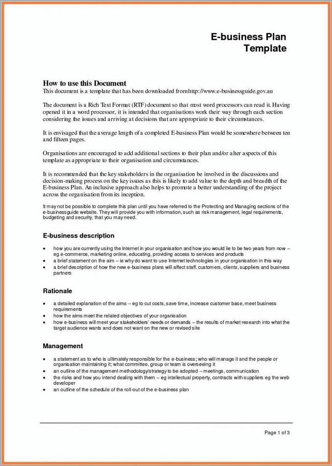 Merrill Lynch Preliminary Business Plan Template
