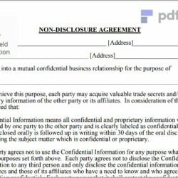 Non Disclosure Agreement Free Template Download (15)