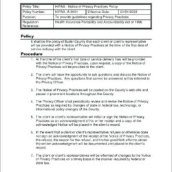 Non Profit Policies And Procedures Template