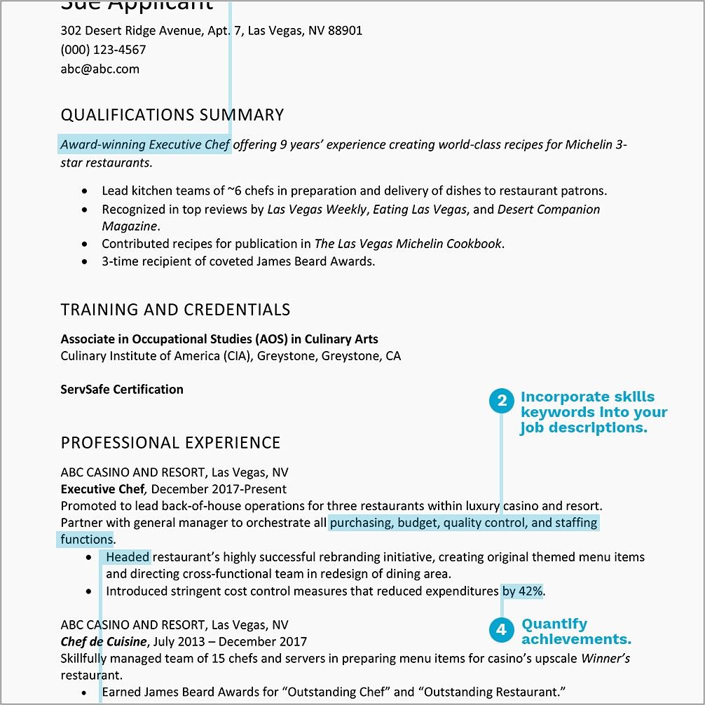 Professional Resume Format For Sales Manager