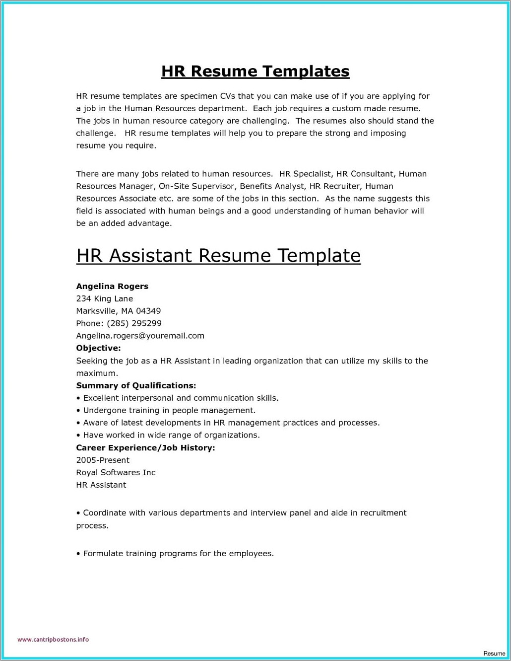 Professional Resume Template For Word 2010