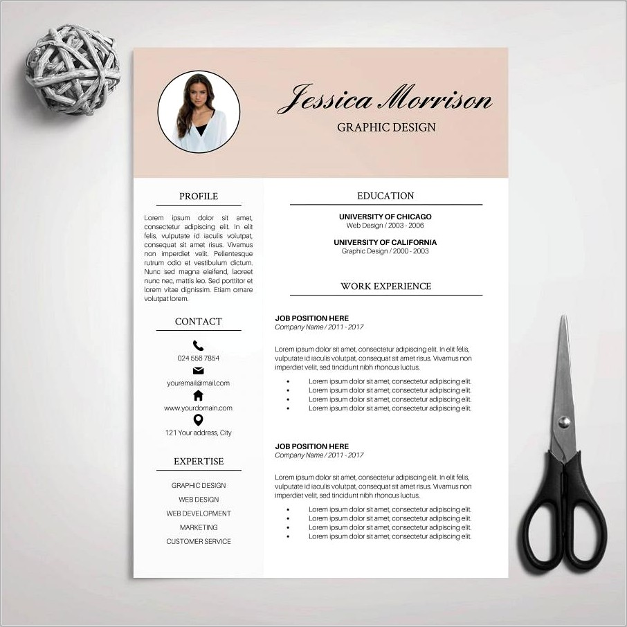 Professional Resume Template Ms Word
