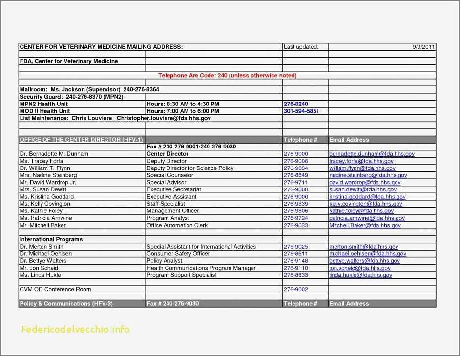 Professional Resume Template Word 2007