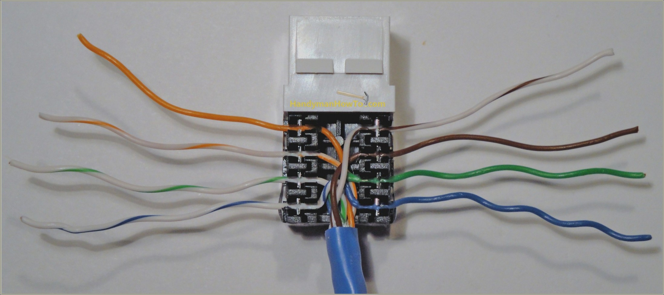 Cat 5 Wiring Diagram For Wall Plates