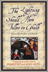 Ghalib Selected Poems And Letters