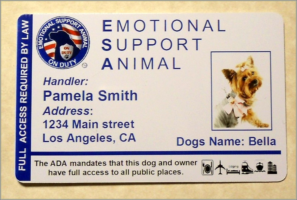 Maine Emotional Support Animal Letter