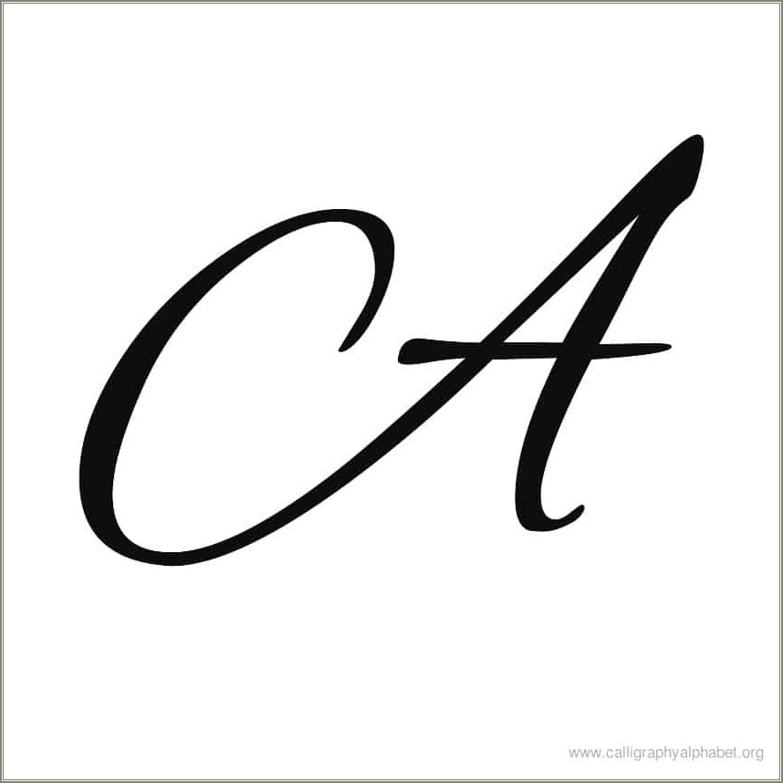 Stylish Calligraphy Letter D